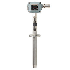 Gas detector for use in furnace